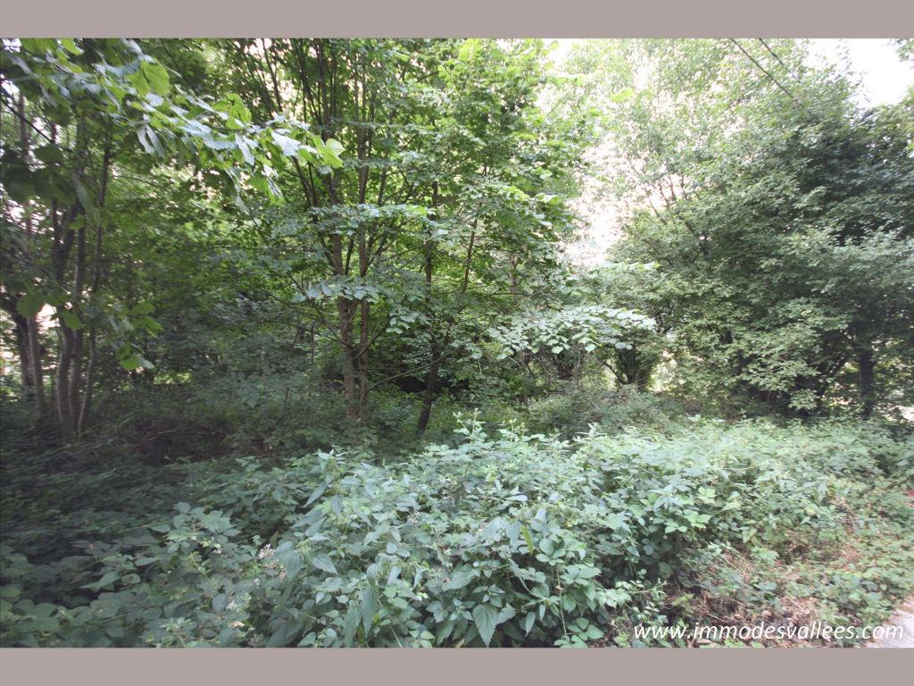 Terrain Dommartin Les Remiremont 1300 m2