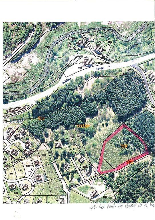 Achat/vente terrain Le Tholy 7695 m2