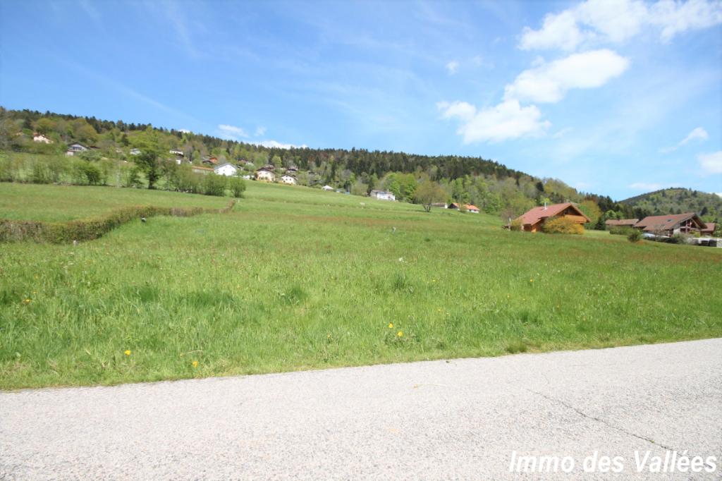 Terrain Basse Sur Le Rupt 1300 m2